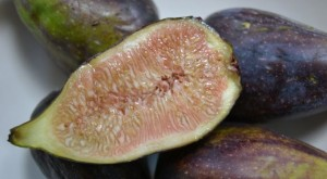 Sweet and squidgy- figs are a real treat.
